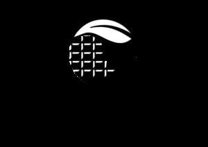 Logo féé te vous plasir - Chocosmétologie