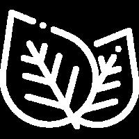 leaf (1)