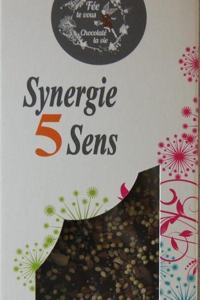 synergie5sens